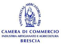 Proposte Per L'internazionalizzazione Delle Imprese Bresciane